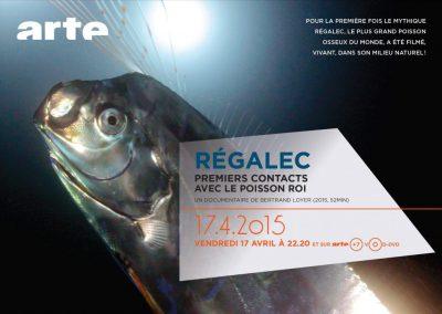 Régalec, premier contact avec le poisson roi – 52'