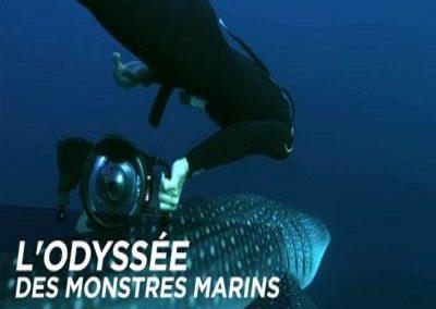 L'odyssée des monstres marins